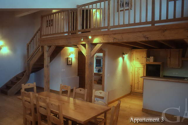 Very nice large rental apartment | Alps